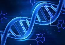 Akıllı Telefonlara DNA Testi Özelliği