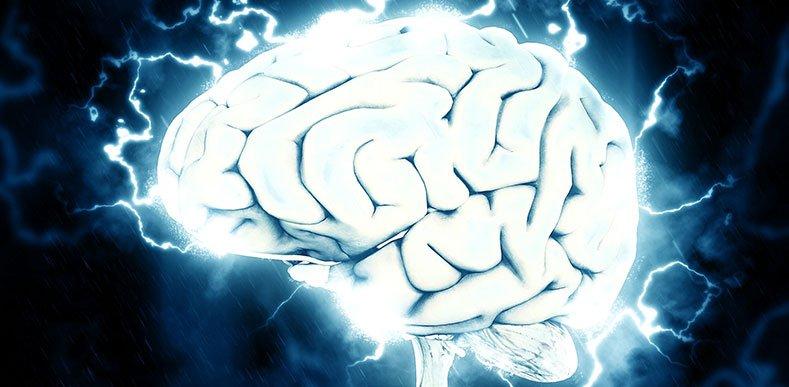 Yetişkin-Beyni-Okumayı-Öğrenerek-Şekillendirilebilir-mi-webhakim-p-1702