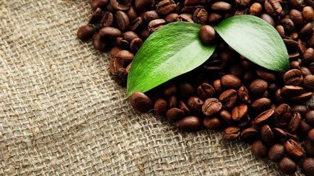 İklim-Değişikliği,-Kahvenizin-Daha-Pahalı-Olmasına-Neden-Olacak