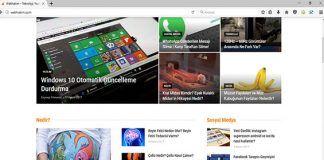tor browser alternatifi