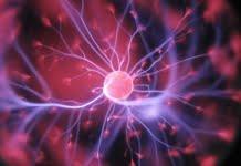 Bilim Adamları 3 Kişinin Beynini Birbirine Bağladı