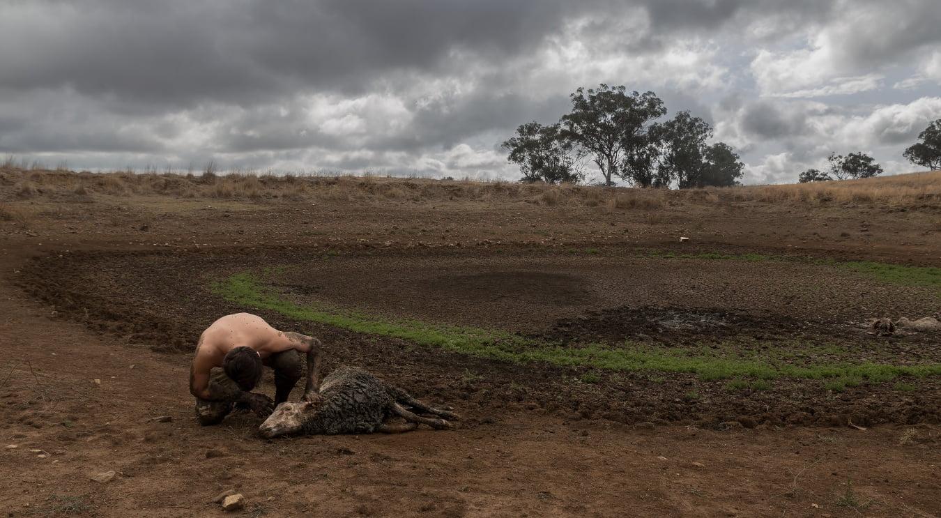 İklim Değişikliği, Kurak Alan Ekosistemlerinde Ani ve Yıkıcı Değişimlere Yol Açacak!