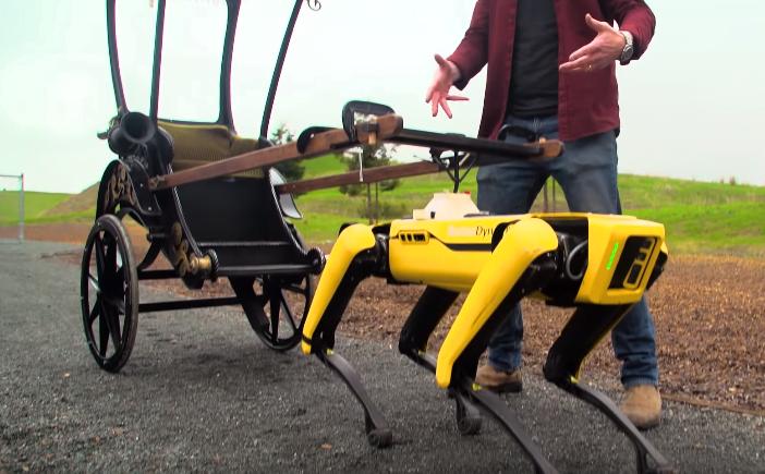 Ürkütücü Robotik Köpek Spot İş Başında! Adamlar Çalışıyor Dedirtecek Cinsten