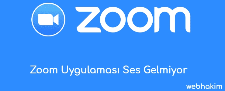 Zoom Uygulamasi Ses Gelmiyor