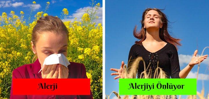 hurma alerjiye iyi gelir