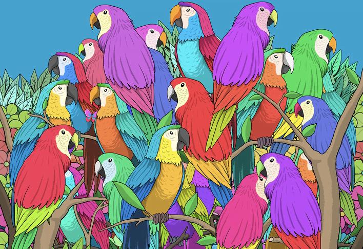 papaganlar arasindaki kelebegi bulun