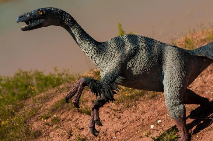 En Küçük Dinozor Yumurtasi Fosili Keşfedildi-photo