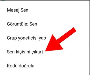 whatsapp'ta grup silme