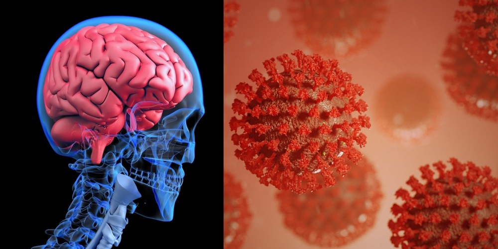 Korovirus IQ Dusuruyor