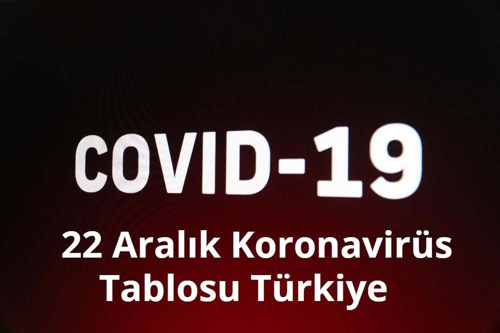 22 Aralik Koronavirus Tablosu