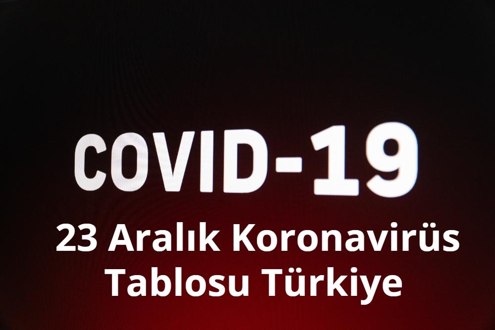 23 Aralik Koronavirus Tablosu