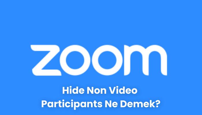 Hide Non Video Participants Ne Demek