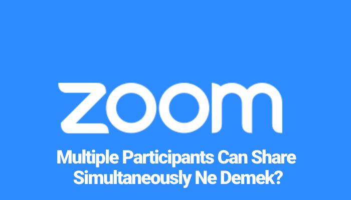 Multiple Participants Can Share Simultaneously Ne Demek