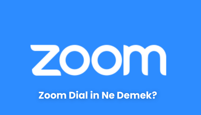 Zoom Dial in Ne Demek