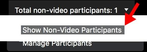 show non video participants