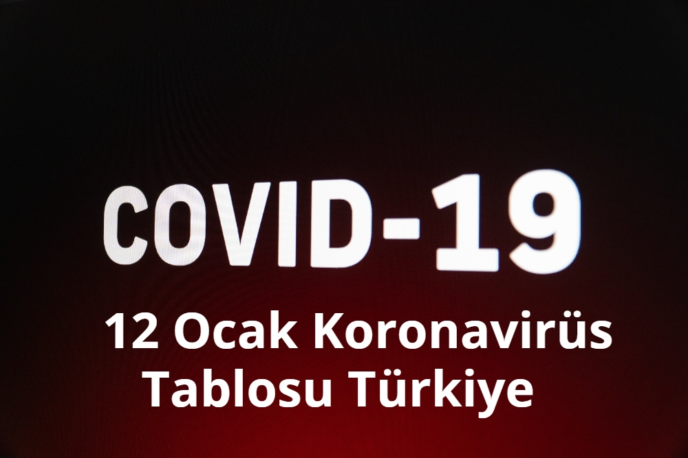 12 Ocak Koronavirus Tablosu