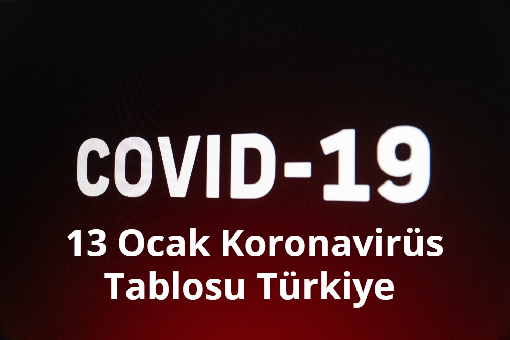 13 Ocak Koronavirus Tablosu