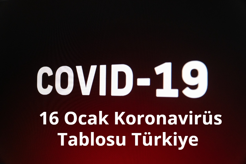 16 Ocak Koronavirus Tablosu