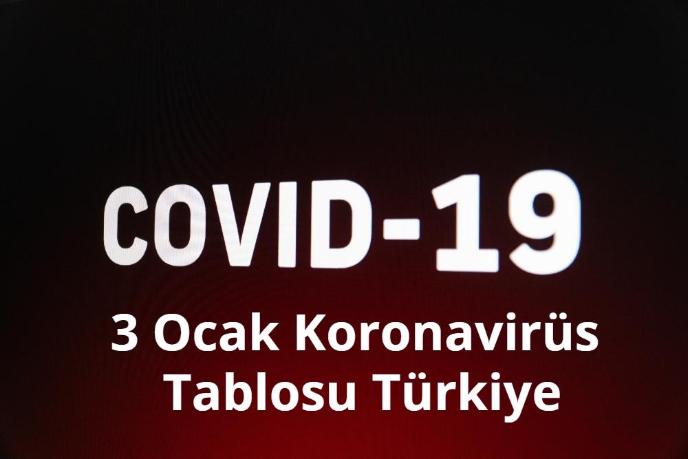3 Ocak Koronavirus Tablosu