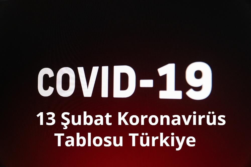 13 Subat Koronavirus Tablosu
