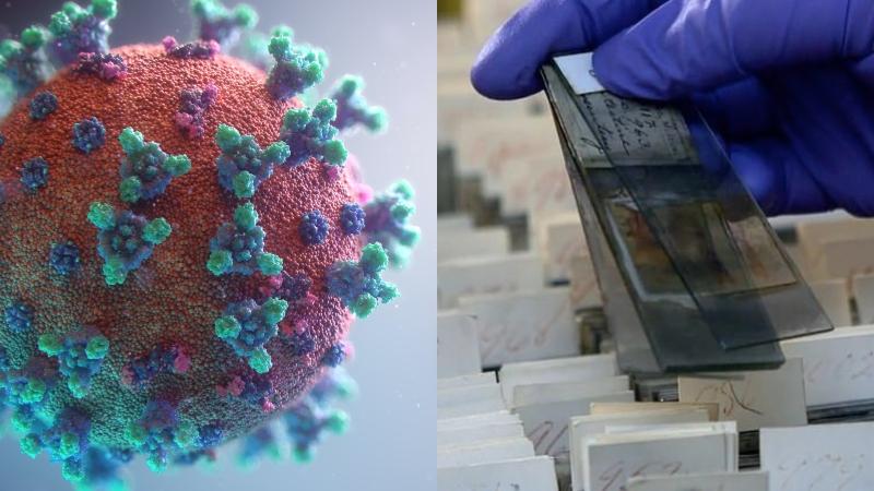 ABD Vücutta Koronavirüs Algilayan Mikroçip Geliştirdi